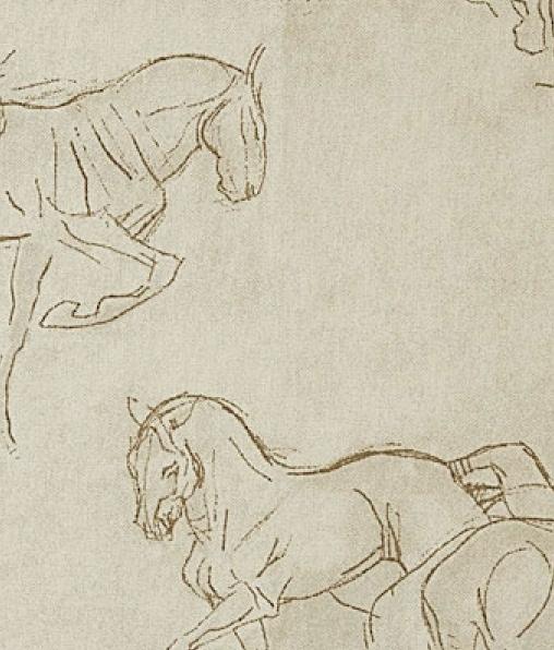 HORSES 1 (ЛОШАДИ)